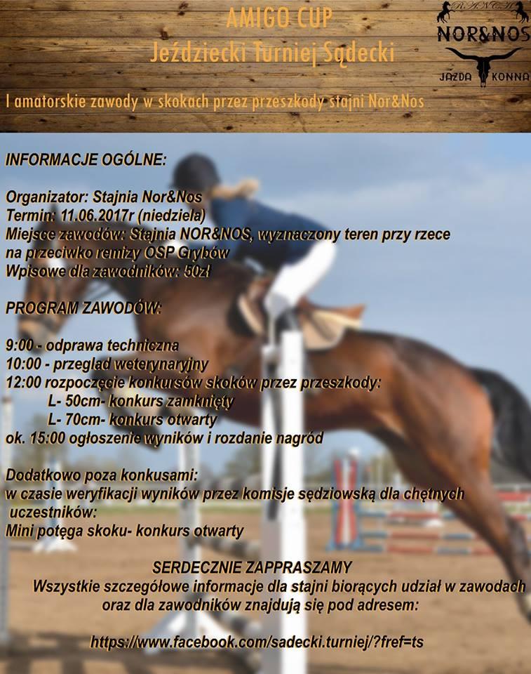 plakat zawody jeździeckie Turnieju Sadeckiego