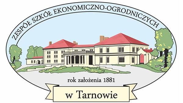 ZSEO logo